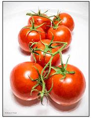 Tomatoes Impressionistic