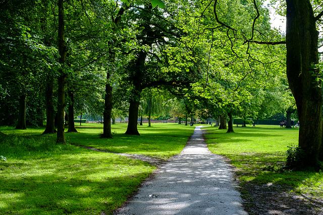 Manor Park paths