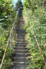 impressionnant escalier