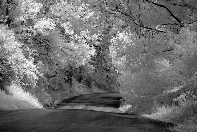 The same back road seen elsewhere in color