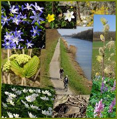 Einer von zwei Spaziergängen am Wochenende vor Ostern 2020