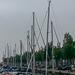 20140906 007Hw [NL] Harlingen (Terschelling)