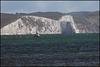 Dorset chalk cliffs