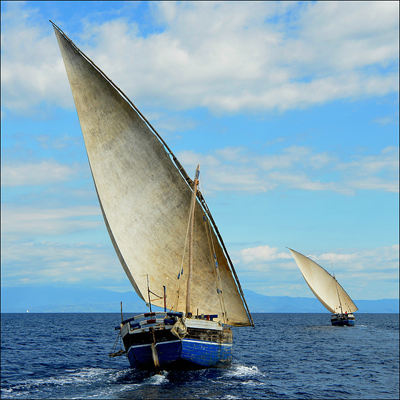 Wind in my sails.