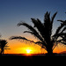 Posta de sol a Can Pastilla - Puesta de sol en Can Pastilla (© Buelipix)