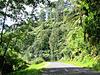 Road From Ahititi.