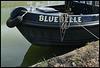 Bluebelle