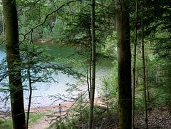 lac et forets des Vosges