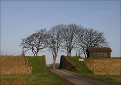 Reiderwolderpolder (prov Groningen)