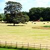 Farming in Wiltshire