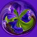Flower orb 3