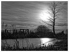 Black & White Friday - Verfangen