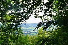 Blick zum Limpurger Bergen