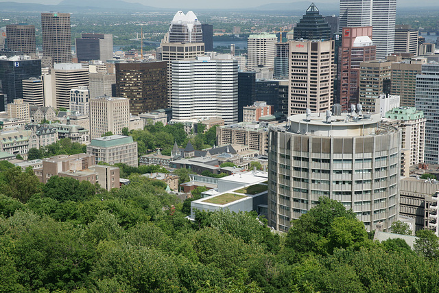 View Over Montreal