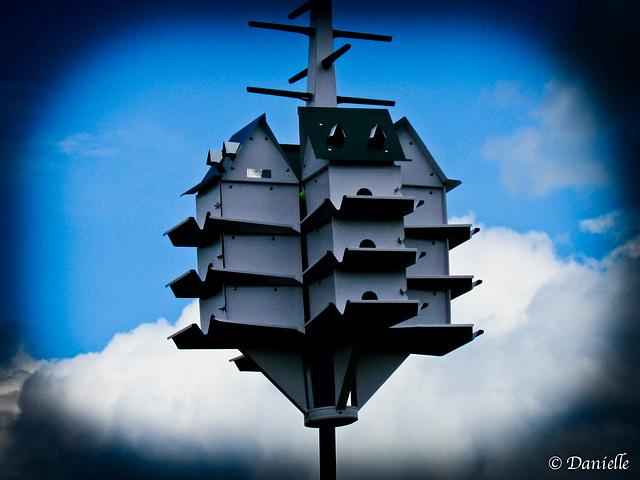 Condo pour oiseaux avec vue sur la rivière…..