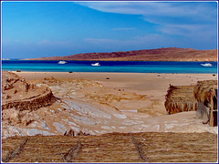 HURGADA : la barriera corallina fa il giro dell'isola Giftun - un altro mondo!