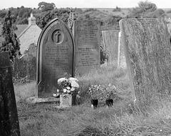 Hartington churchyard (1)