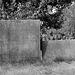 Hartington churchyard (2)
