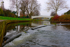 River Sow flowing through Victoria Park