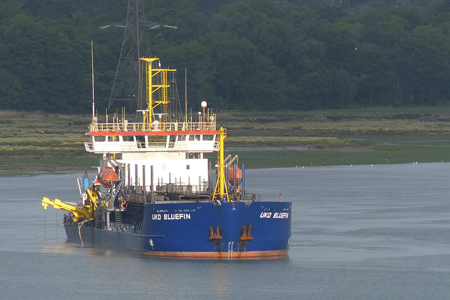UKD Bluefin on the Test (1) - 1 June 2015