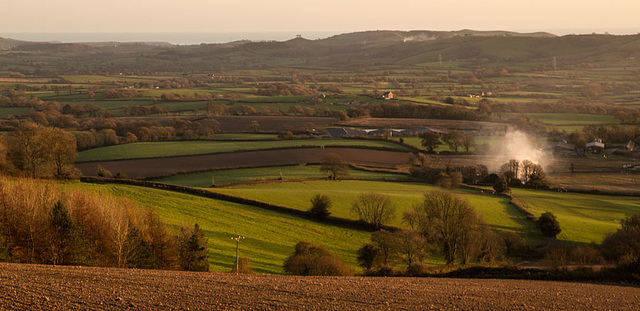 Marshwood Vale on a November afternoon