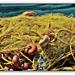 Seemannsgarn - Sailor's yarn (◕‿-)