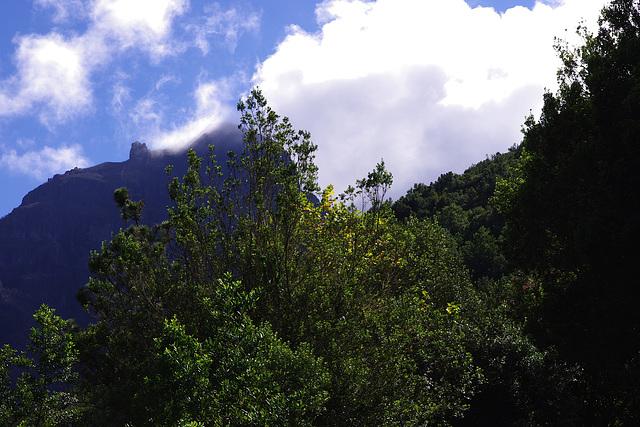 Le nuage s'endort sur la montagne