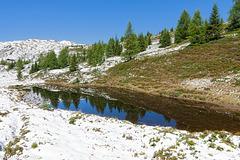 Schnee im Sommer - Snow in summer