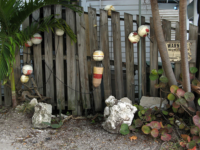 Fence in Key West