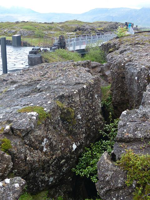 Þingvellir (1) - 18 June 2017