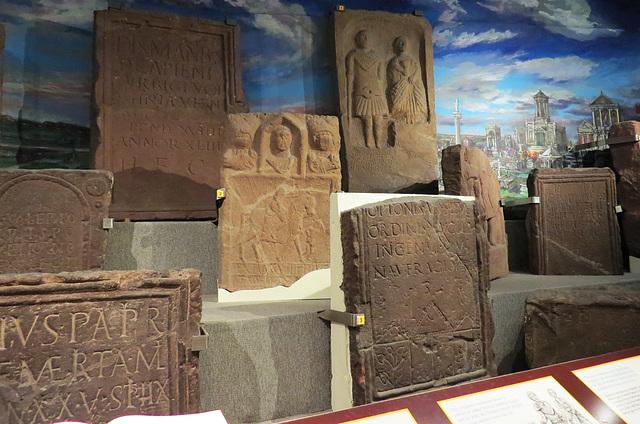 grosvenor museum, chester