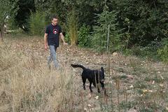 Mon fils Yoran dans sa campagne