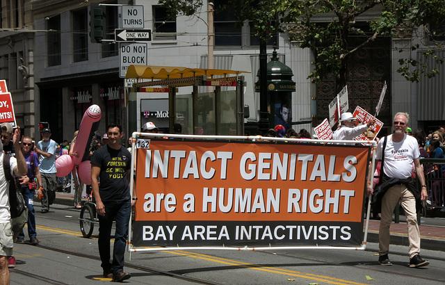 San Francisco Pride Parade 2015 (1448)