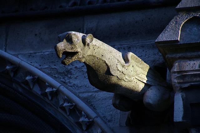 Une des nombreuses gargouilles de Notre-Dame de Paris