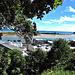From Above Whakatane