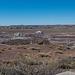 The Petrified Forest,31 Arizona