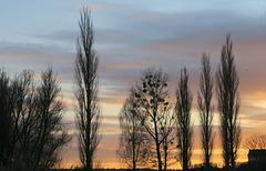 Sonnenuntergang am Käbelicksee