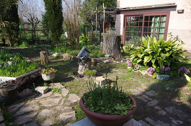 Someone's front garden