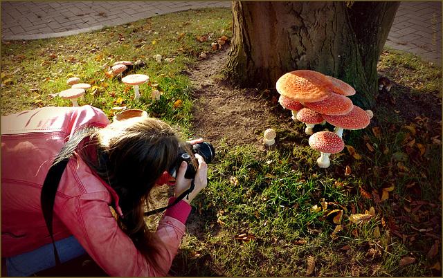 Girl in Mushroom Wonderland... (+PiP collage :-)