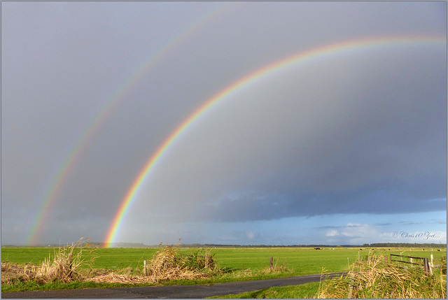 Magic Rainbow('s)... Click on the PiP to see the 180º one and a close-up...