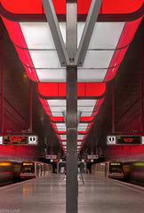 Rote Symmetrie / Red Symmetry
