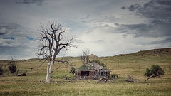 prairie tales...