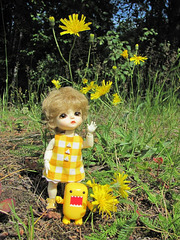 Eggie and Sunny2 picking flowers