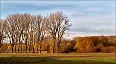 Niederrheinische Landschaft