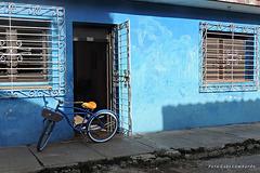 blue cuban world