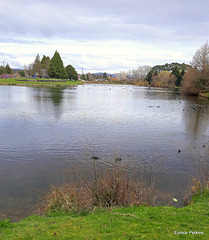 Across The Lake,