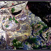 Rock pool, Basset Cove. For Pam. H. A. N. W. E. everyone!