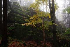 Bärenfels