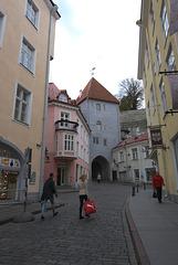 Tor am Langen Domberg