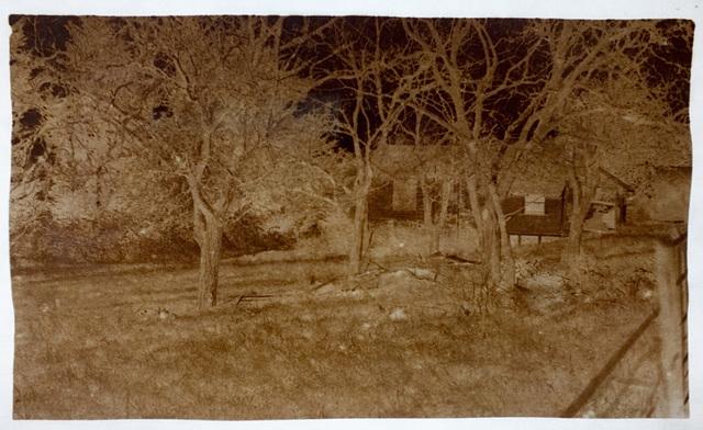 Abandoned house calotype